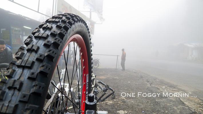 I love this fog